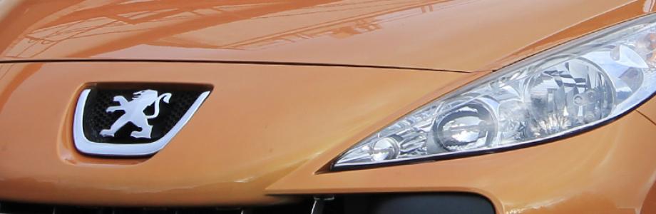 Peugeot Tuning Sportauspuff Leistungssteigerung