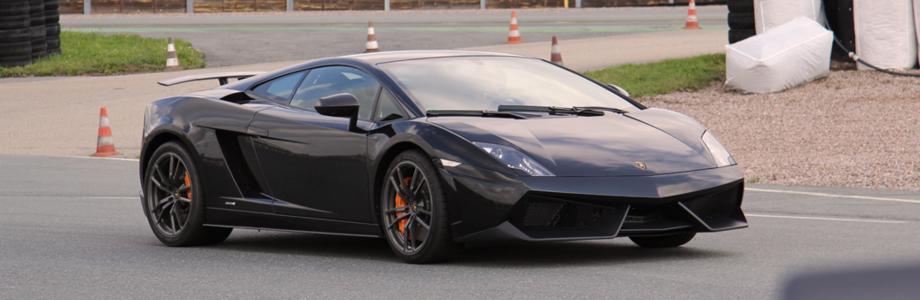 Lamborghini Gallardo Loonytuns