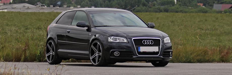 Softwareoptimierung Chiptuning Ökotuning für ihren Audi A3 8P